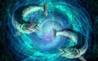 Рыбы лучшая совместимость с другими знаками. Рыбы-рыбы