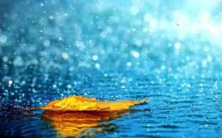 Стоять под ливнем во сне. Приснился дождь или ливень – что это может значить? Идти, гулять под дождем