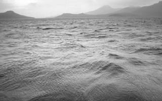 Черная вода к чему снится сонник оракул. К чему снится черная вода