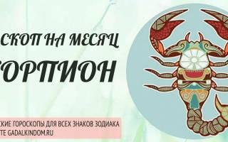 Точный гороскоп скорпион женщина на август. Скорпион — гороскоп на август