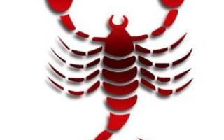 Скорпион знак зодиака судьба по дате рождения. А вы знаете, с какого числа начинается знак зодиака Скорпион? Скорпион в семье и любви