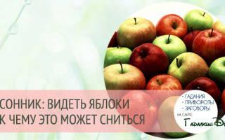 К чему снится собирать яблоки в саду. К чему мы видим во сне яблоки? Трактовка известных сонников