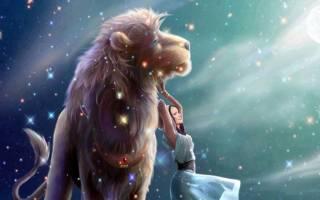 Гороскоп на завтра для мужчины знака лев. Любовный гороскоп на завтра для женщины знака лев