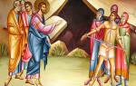 Бесы вселились в свиней. Почему Иисус позволил бесам войти в стадо свиней? Изгнание бесов в свиней и гибель их в море
