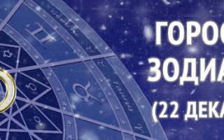 Восточный гороскоп козерог. Знак зодиака Козерог по периодам рождения