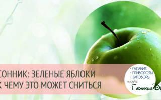 Приснились яблоки зеленые на дереве. Зеленые яблоки