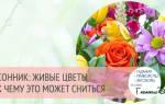 Цветы продавать живые. К чему снятся живые цветы: интерпретация