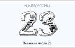Какой вы человек если родились 23 числа. Тайны чисел — двадцать три (23)
