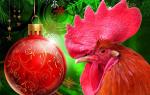 Новый Год Огненного Красного Петуха – что несет и обещает? год – прогноз астрологов. Положительные качества знака