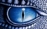 13 знаков зодиака даты рождения характеристика. Астрологи утверждают, что существует тринадцатый знак Зодиака – Змееносец: когда он родился, какой у него характер