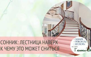 Снится лестница. К чему снится спускаться по лестнице: значение и толкование сна