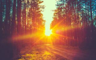 Сонник утро рассвет. Рассвет: к чему снится сон