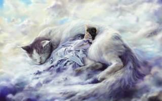 К чему во сне видеть как. Что значит если снится