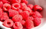 Видеть во сне ягоды малины. К чему снится малина: грядет сладкая жизнь? Основная трактовка снов