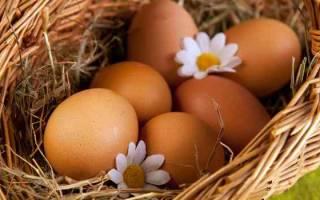 К чему снится мыть куриные яйца. К чему снятся куриные яйца