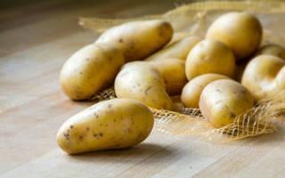 К чему снится выкопанная картошка: значение и толкование, что предвещает, чего ожидать. К чему снится копать картошку во сне