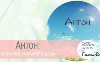Значение имени антон совместимость. Антон — значение имени, происхождение, характеристики, гороскоп