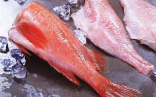 К чему снится рыба без головы мужчине. Приснилась рыба без головы но живая во сне