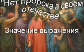 Пророк в своем отечестве. Использование фразеологизма «нет пророка в своем отечестве» в литературе