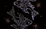Гороскоп удачи в лотерею на декабрь. Рыбы знак зодиака прогноз лотерейный