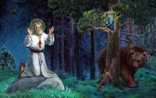 Молитва серафиму саровскому об исцелении. Молитва о замужестве серафиму саровскому
