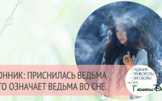 К чему снится ведьма во сне девушке. Сонник: ведьма старая, молодая, злая или добрая