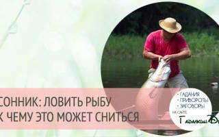 К чему снится ловить рыбу удочкой женщине. Во сне ловить рыбу