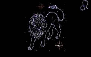 Гороскоп мужчины льва на год. Что вызывает аллергию чихание