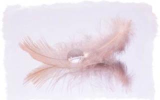 Общение с ангелами и ангелами-хранителями. Ангельские знаки