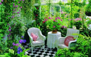 Цветочная магия. Магические растения и их свойства