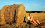 К чему снится грести сено. Действия с сеном
