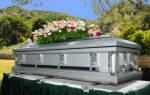 К чему снится закапывать гробы. К чему увидеть гроб во сне? Гроб в могиле