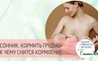 Сон кормление младенца. К чему снится сон, когда во сне кормишь грудью