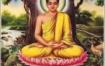 Какие народы рф исповедуют буддизм. Какие народы исповедуют буддизм? Евгений Торчинов, Андрей Терентьев