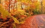 7 октября какой праздник церковный приметы. Приметы для девушек