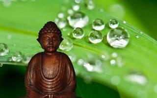 Жизнь есть страдание причина страданий. Истины буддизма кратко