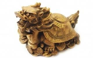 С чем сочетается по фэншую черепаха дракон. Драконочерепаха — символ гармонии вселенной