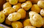 Копать картошку во сне: грядет приличный урожай? Копать картошку во сне к чему снится.