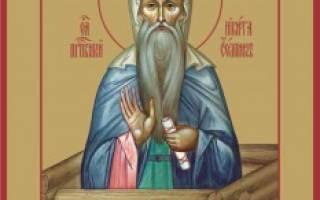 Преподобный никита столпник переяславский. Преподобный никита столпник, переяславский чудотворец