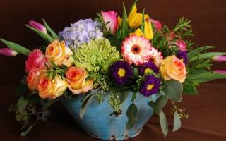 Цветы-обереги: магические свойства растений для удачи, любви и денег. Магические свойства физалиса