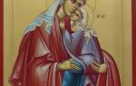 Праведная анна 22 декабря. Икона «Зачатие Пресвятой Богородицы