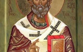 Помощь святителя спиридона. Маленькие чудеса великого святого