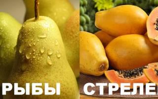 Тест какой фрукт тебе подходит. Шуточный гороскоп: какой вы фрукт по Знаку Зодиака
