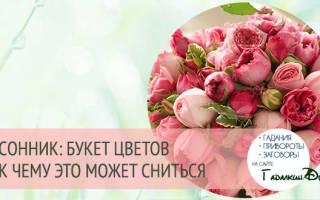 Что означает сон букет цветов. К чему снятся красные цветы